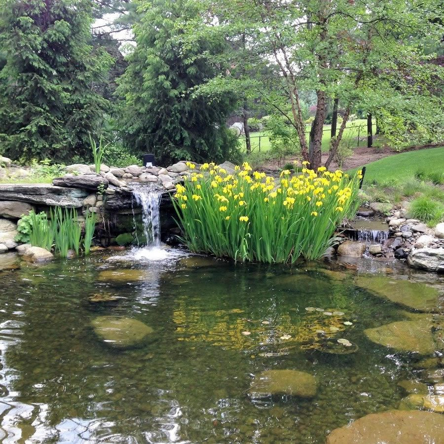 Completed Landscape Design Project with Pond and Waterfall